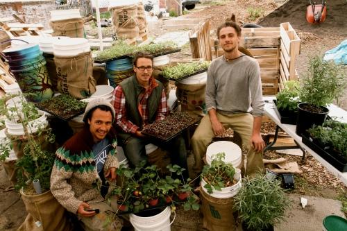 Kai Boettcher, Luke Kimmel, Dave Carlton of The Leaf Ninjas