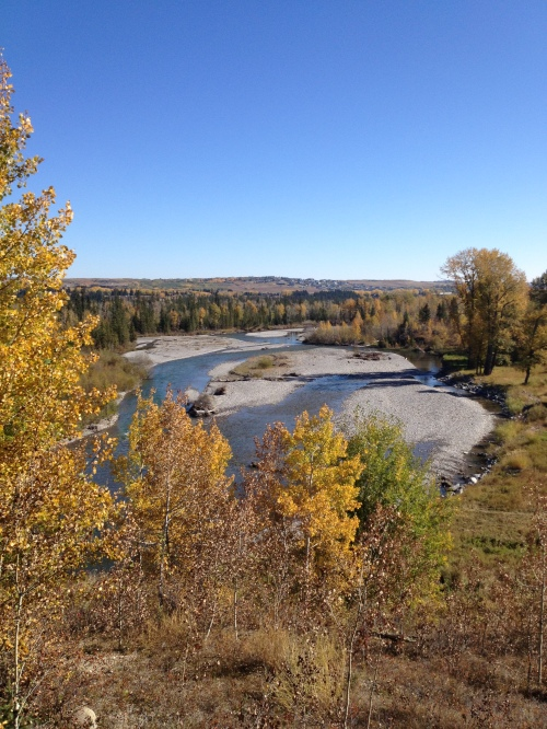 Elbow River Fall 2012