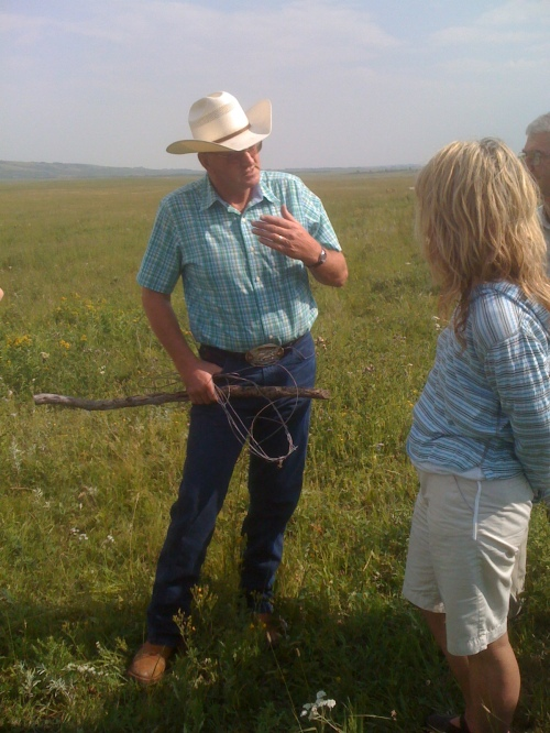 Alberta cattle ranchers love  their cattle and most of them love to have a chance to tell you  how they raise them Photo of my friend Lindsay Eklund at LJ Ranch in Cochrane - circa 2010  - Karen Anderson