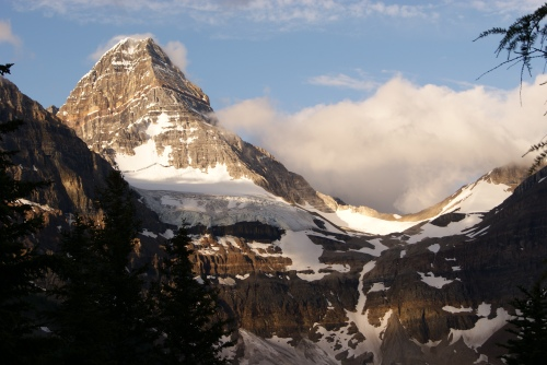 Late evening light on Mt. Assiniboine photo - Karen Anderson