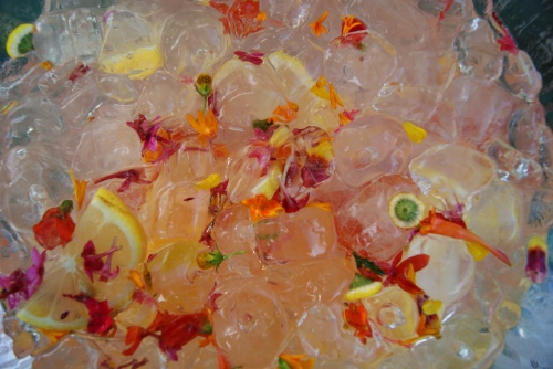Rhubarb Cordial punch with edible flowers floating photo - Karen Anderson