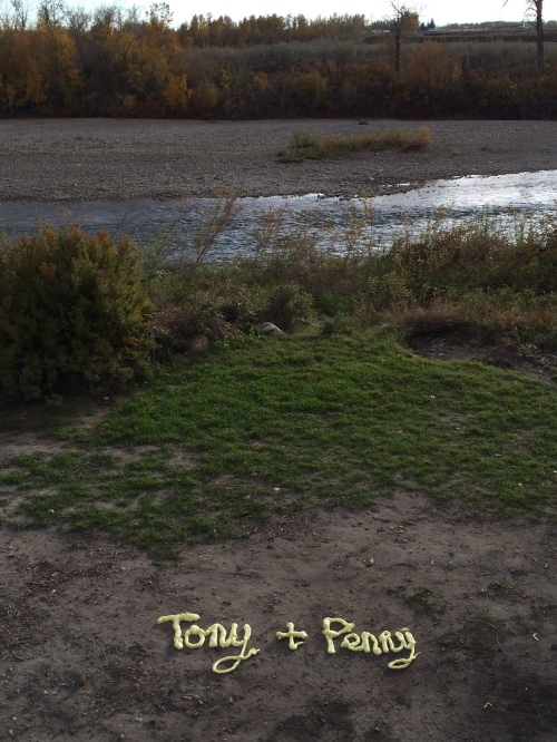 Post Alberta Flood love note  as seen at HIghwood Crossing (being written with insulation foam makes it even more romantic) photo - Karen Anderson