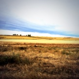 Alberta harvest time land and skyscape photo from a moving bus - Karen Anderson