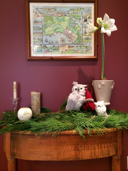 add a little whimsy to your holiday decor with this year's trendy little owls photo - Karen Anderson