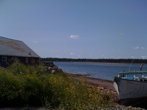 My grandfather's fish market on the Passamaquoddy bay in St. Andrews, New Brunswick photo - Karen Anderson