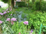 There's a definite theme to the colours in Monet's garden photo - Karen Anderson