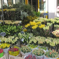 Spring flowers - this really was an April in Paris photo - Karen Anderson