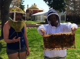 Me checking on my bees with my beekeeping guru Eliese Watson (we don't open the hives on the tours!) photo - Karen Anderson