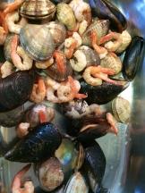 delicate seafood photo - Karen Anderson