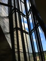 looking up - photo - Karen Anderson