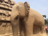 granite elephant - photo - Karen Anderson
