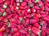 first berries of spring - photo - Karen Anderson