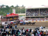 The exciting chuckwagon races - photo - Karen Anderson