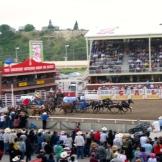 The exciting chuckwagon races - photo - Karen Anderson