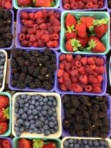 pick your berry - photo - Karen Anderson