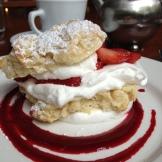 Strawberry Shortcake - photo - Karen Anderson
