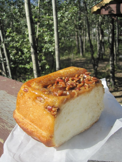 sourdough cinnamon buns near Whitehorse, Yukon Territory - photo credit - Karen Anderson