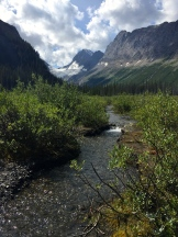 Burstall Pass Hike - photo - Karen Anderson