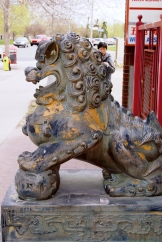 Protective male lion - There's lots of Feng Shui in Chinatown's art and edifice - photo credit - Karen Anderson