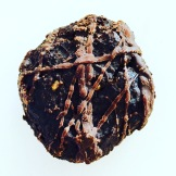 #IYP2016 chocolate lentil cookie by chef Liana Robberecht - photo credit - Karen Anderson