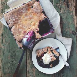 Feast - recipes and stories from a Canadian road trip by Lindsay Anderson and Dana Van Veller - savour it all blog by Karen Anderson