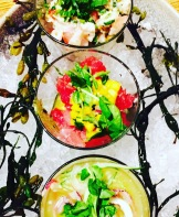 Ceviche Trio at Frontera Grill - photo credit - Karen Anderson