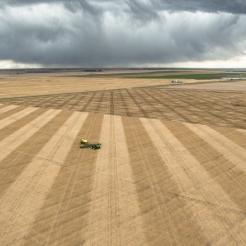 harvest time in Alberta