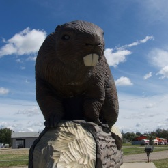 Giant beaver in Beaverlodge, Alberta