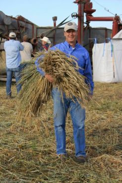 David Farran, owner of Eau Claire Distillery in Turner Valley with barley he harvested