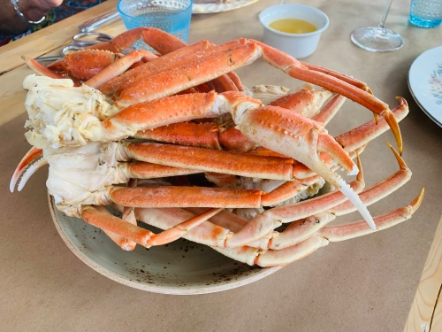 Fogo Island Crab - photo by Karen Anderson