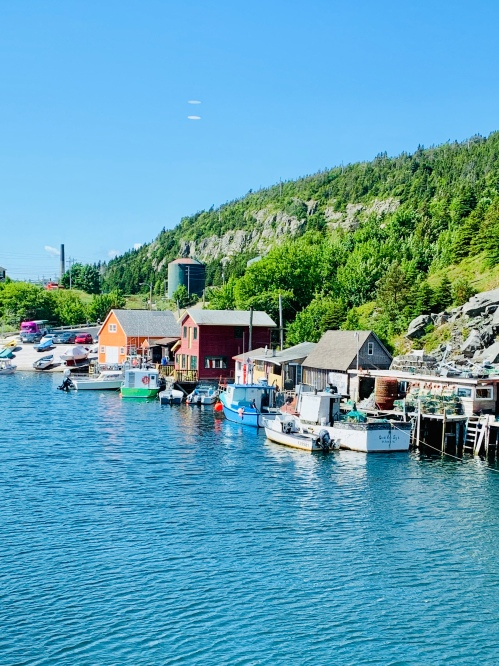 Quidi Vidi - photo by Karen Anderson