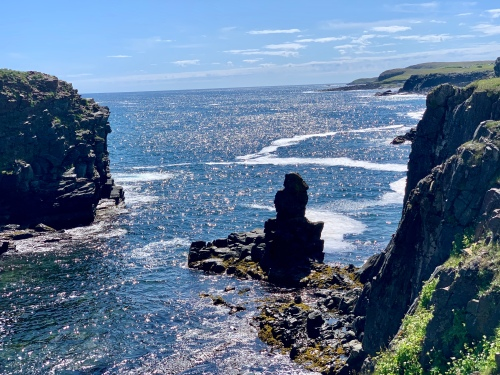 View from cliffs at Elliston, NL - photo by Karen Anderson